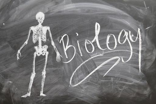 A Free Online Bachelor's Level Biology Curriculum