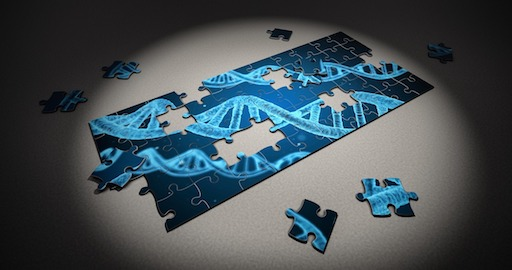 Do Races Exist? A Genetic Perspective